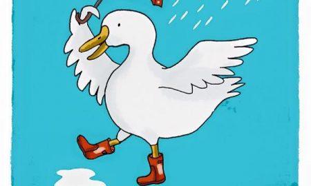 good day for ducks