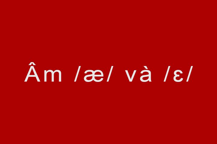 am-ae